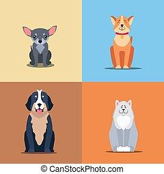 Cute Purebred Dogs Cartoon Flat Vectors Icons Set