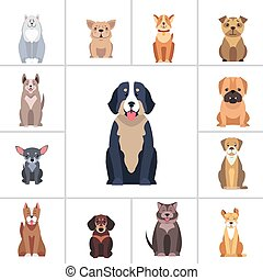 Cute Purebred Dogs Cartoon Flat Vectors Icons Set - Set of...