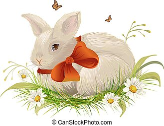 Cute rabbit bow sitting on grass