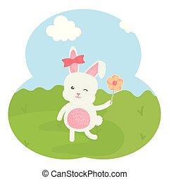 cute rabbit female in the field
