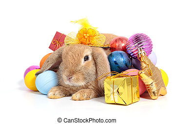 Cute rabbit with Easter eggs isolated on white background