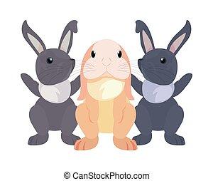 cute rabbits cartoon