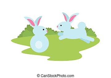 cute rabbits couple in the camp scene