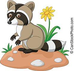 Cute raccoon cartoon - Vector illustration of Cute raccoon...