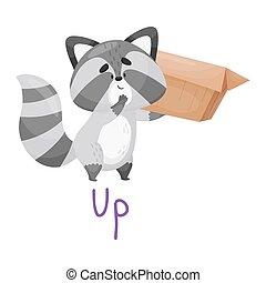 Cute Raccoon Lifting Box Up With Handwritten Inscription Preposition Up Vector Illustration Cartoon Character