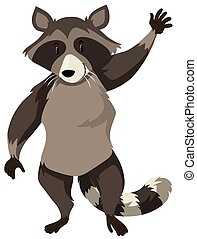 Cute raccoon on white background
