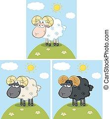 Cute Ram Sheep. Collection Set