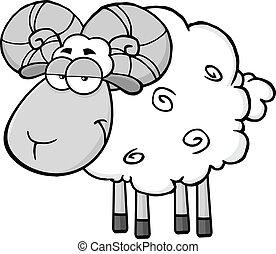 Cute Ram Sheep In Gray Color