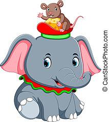 cute, ratinho, jogo, elefante, chapéu
