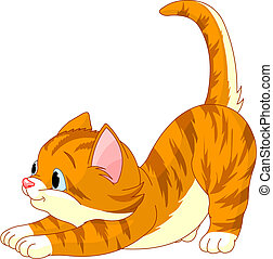Cute red hair Cat stretching against white background