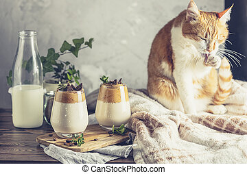 Cute red white cat relaxed near two glasses of Iced Dalgona ...