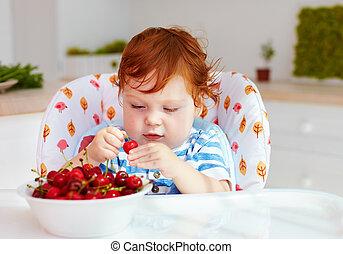 cute redhead infant baby tasting sweet cherries while...