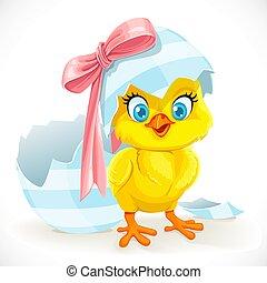 cute, retfærdig, påske, baby chick, udklækk, ægget