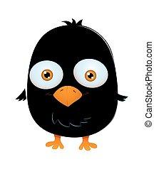 Cute Scared Black Bird
