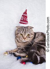 Cute Scottish Fold in funny Santa hat on white fur