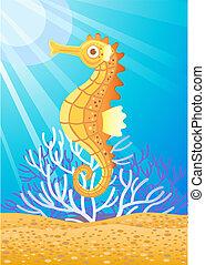 cute, seahorse