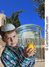 Cute seven year old boy at the Golden Menorah - Cute seven...