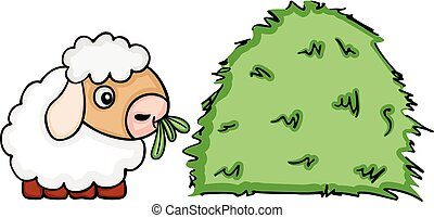 Cute sheep eating grass