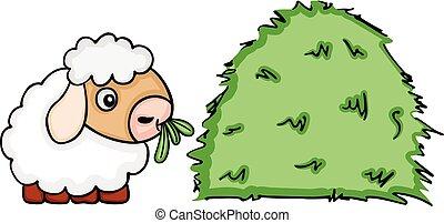 Cute sheep eating grass