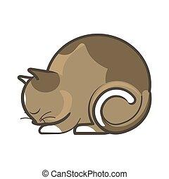 Cute sleepy brown cat