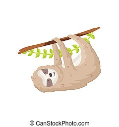 Cute sloth hanging on tree branch. Funny greeting card with animal cub isolated on white background