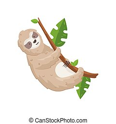Cute sloth hanging on tree branch isolated on white background