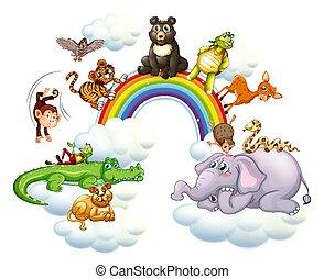 cute, sobre, animais, arco íris