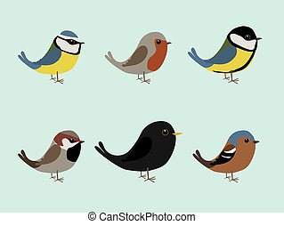 Cute songbirds - A collection of cute songbirds illustration