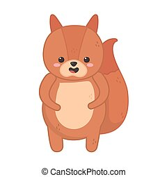 cute squirrel animal on white background