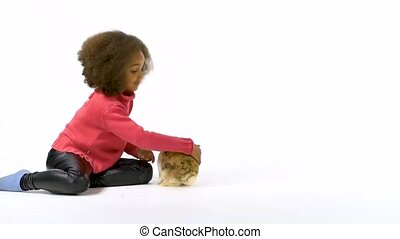Cute three colored rabbit is sniffing and looking around, little african curly girl is stroking him. Slow motion