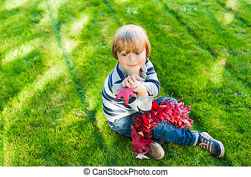 Cute toddler boy sitting on a green lawn and playing with red maple leaves