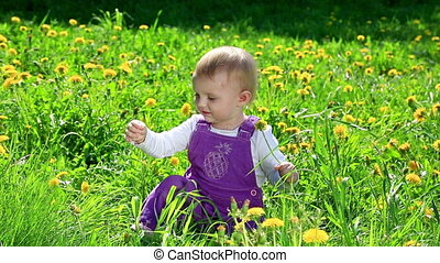 Cute toddler on flower field in sunny day