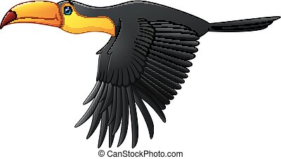Cute toucan bird cartoon flying