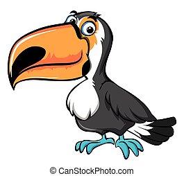 Cute toucan bird on white background