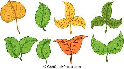 cute, tropicais, e, outono sai, caricatura