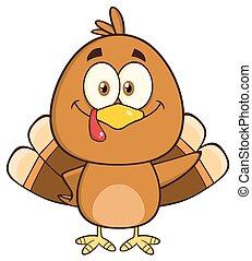 Cute Turkey Bird Character