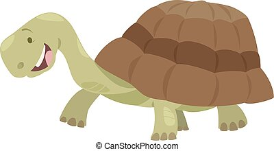cute turtle animal character