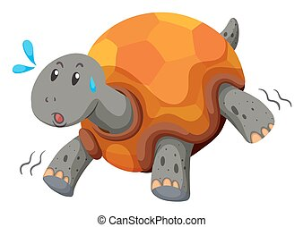 Cute turtle running with swet