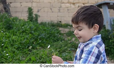 cute two years old baby boy collecting flowers