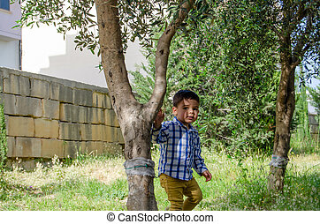 Cute two years old boy hiding behind the tree in the park