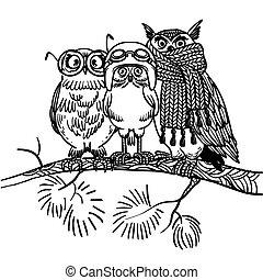 Cute Vector Bright Owls