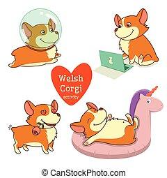 Cute welsh corgi set in different poses. Funny corgi vector illustration.