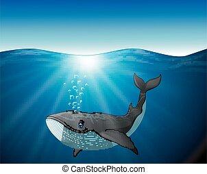 Cute whale cartoon on the sea