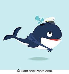 Cute  whale in a sailor suit cartoon