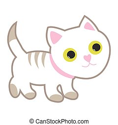 Cute white cat with yellow eyes