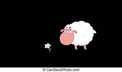Cute White Sheep Cartoon Character Eating A Flower. 4K Animation Video Motion Graphics Without Background