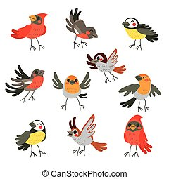 Cute Winter Birds Collection
