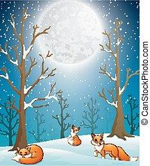 Cute winter foxes enjoying falling snow on night background