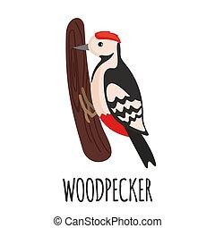 Cute Woodpecker in flat style.