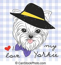 Cute Yorkshire Terrier with hat on a plaid background